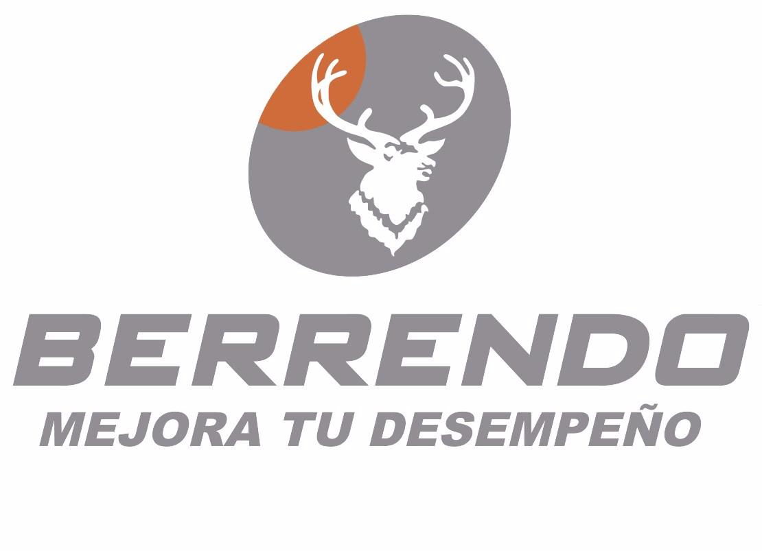 CALZADO BERRENDO