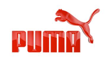 PUMA-rem